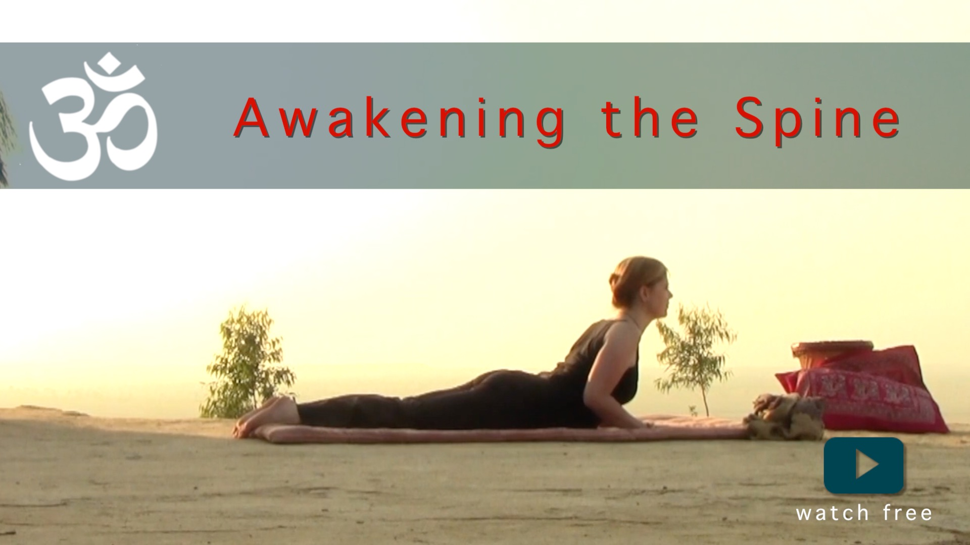 awakening the spine yoga flow