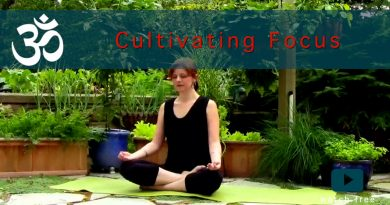 A Cultivating Focus Yoga Flow