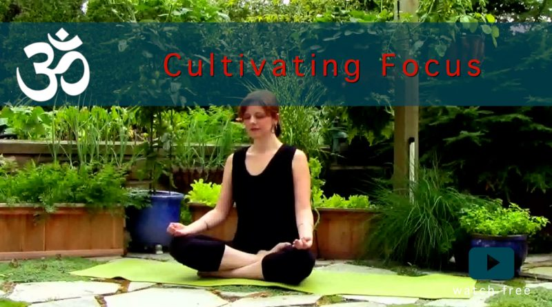cultivating focus yoga flow